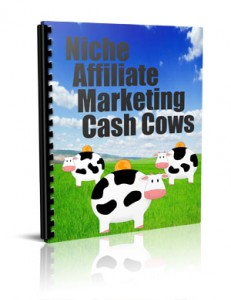 Niche Affiliate Marketing Cash Cows